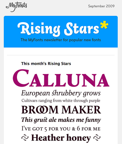 calluna_rising_star